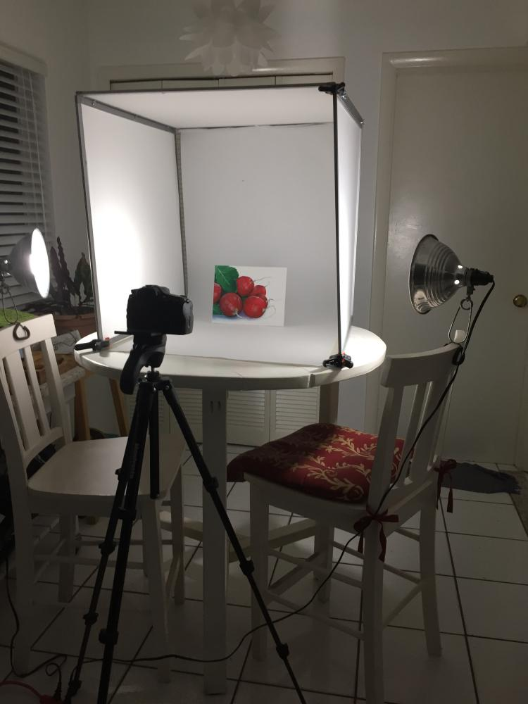 Portable photo light box