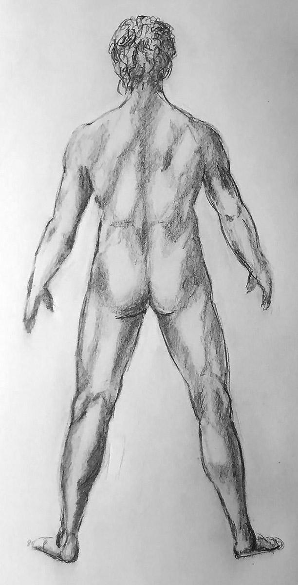 Drawing of Male Nude After Leonardo da Vinci